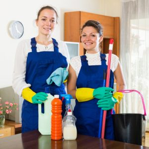 Business Ownership, My Cleaning Connection
