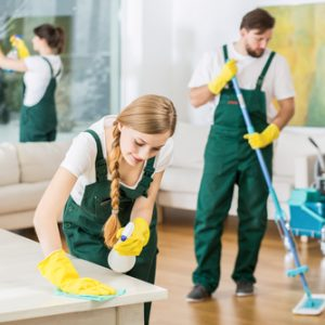 Cleaning Team, My Cleaning Connection