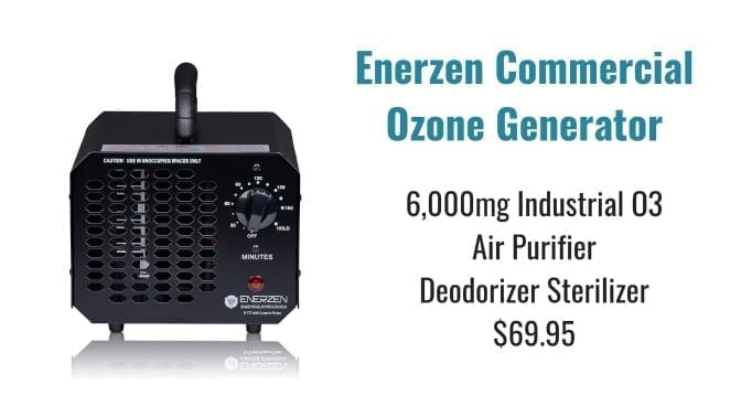 Angela Brown's Top 10 Odor Removal Machines, Enerzen Commercial Ozone Generator