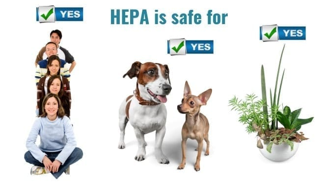 Angela Brown's Top 10 Odor Removal Machines, HEPA is Safe for People, Pets, and plants