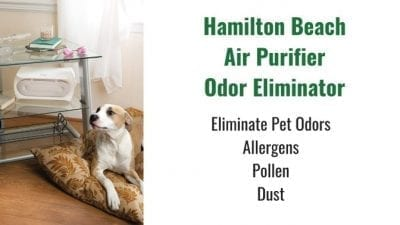 Angela Brown's Top 10 Odor Removal Machines Hamilton Beach Air Purifier Black Displayed with Dog