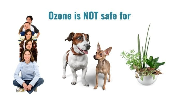 Angela Brown's Top 10 Odor Removal Machines, Ozone not Safe for People, Pets, or plants