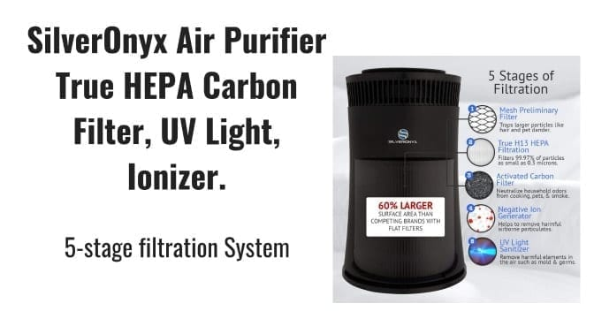 Angela Brown's Top 10 Odor Removal Machines SilverOnyx Air Purification 5-Stage System