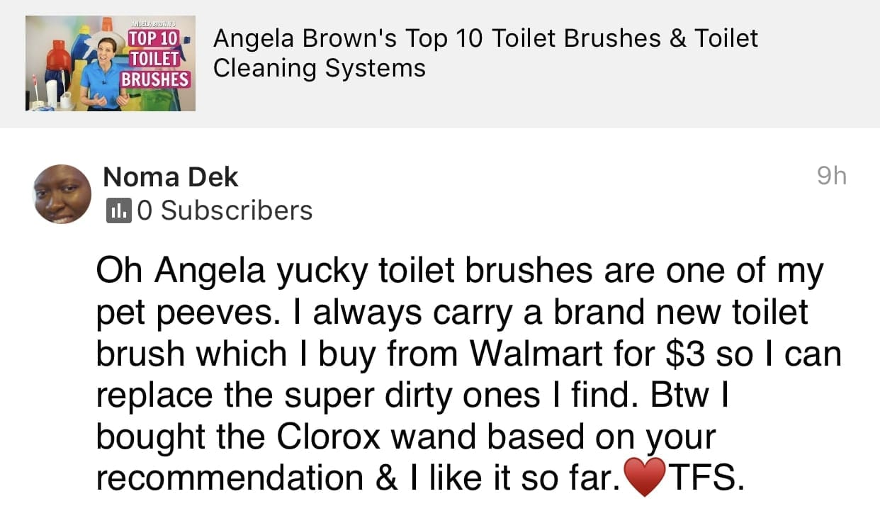 Bought the ToiletWand based on your recommendation, Savvy Cleaner Product Review Testimonial