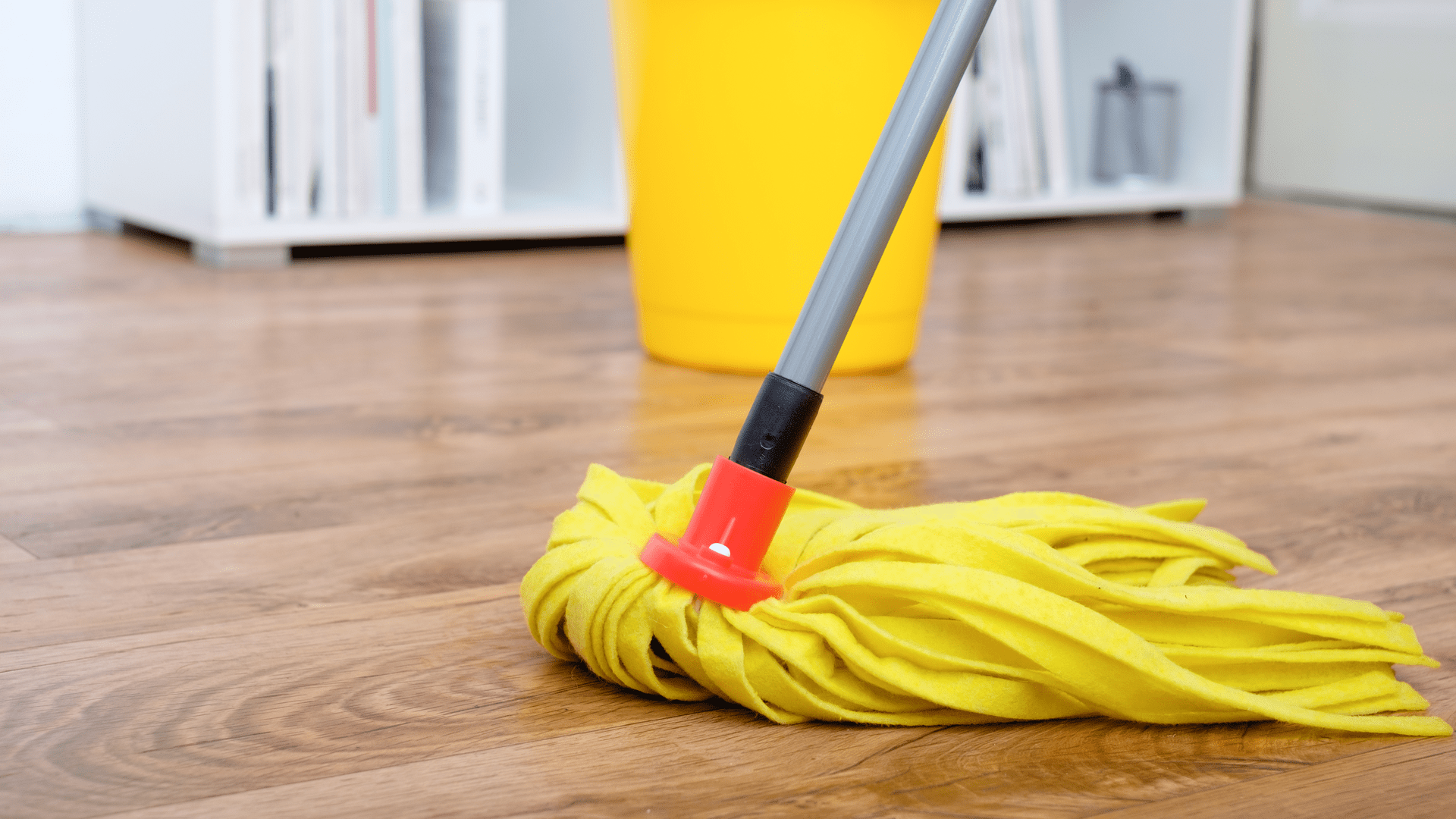 Favorite Mops for Cleaning Homes, Featured Image