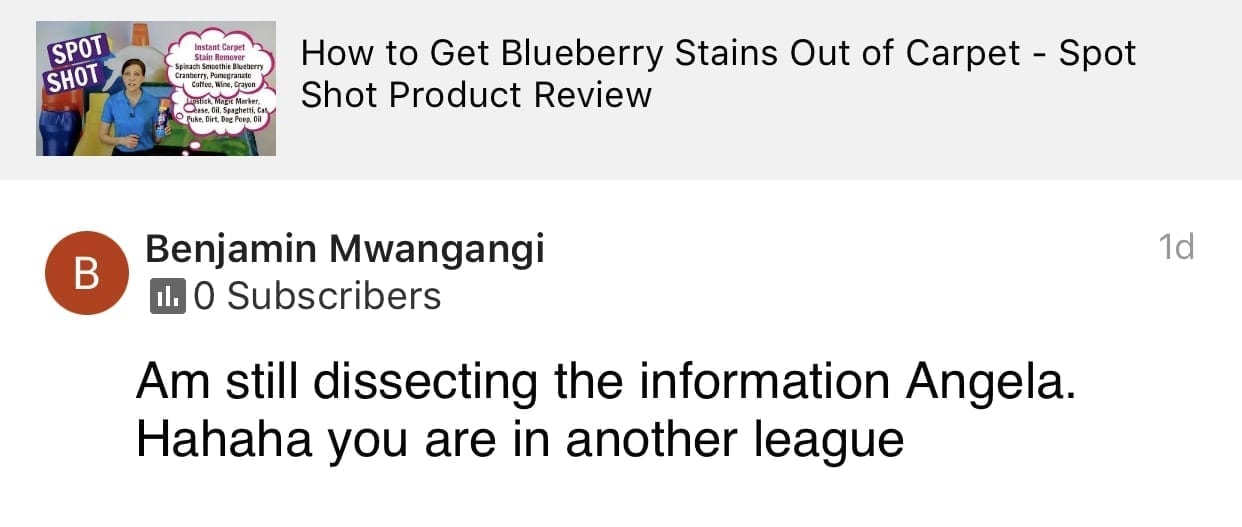 Ha Ha You are in another league, Savvy Cleaner Product Review Testimonial