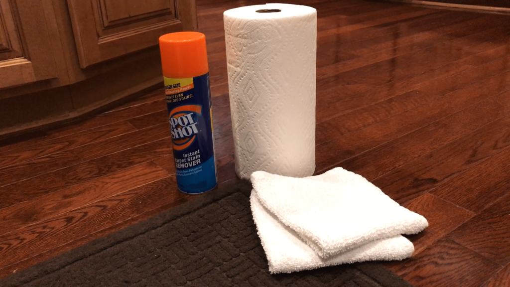 Spot Shot Product Review with Paper Towel and Cloth Featured Image - Featured Image