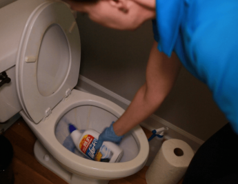 The Works Toilet Bowl Cleaner, Angela Brown Using The Works in Toilet