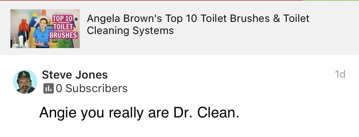 You really are Dr. Clean, Savvy Cleaner Product Review Testimonial